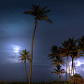 Tropical Moon by Mark Andrew Thomas