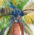 Tropical Palm Inn by Susan Kubes