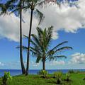 Tropical Paradise In Kauai by Lynn Bauer