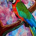 Tropical Parrot by Liz Borkhuis