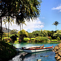 Tropical Plantation - Maui by DJ Florek