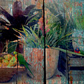 Tropical Still Life by Anthony Robinson