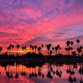 Tropical Sunrise by Creigh Photography