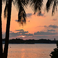 Tropical Sunset by Corinne Rhode