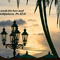 Tropical Sunset Psalm Fifty Seven Vs Three by Linda Phelps