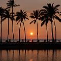 Tropical Sunset Silhouettes  by Dan Peak