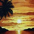 Tropical Sunset by Wayne Pascall