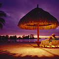 Tropical Tahitian View by Ron Dahlquist - Printscapes