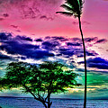 Tropical Trees by Blake Richards