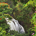 Tropical Waterfall by Dana Edmunds - Printscapes