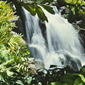 Tropical Waterfall by David Cornwell/First Light Pictures, Inc - Printscapes