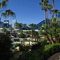 Tropicana And The M G M Grand, Las Vegas by David Burns