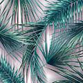 Tropicana  by Mark Ashkenazi
