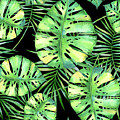 Tropics Noir, Tropical Monstera And Palm Leaves At Night by Tina Lavoie