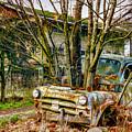 Truck N Tree by Jean OKeeffe Macro Abundance Art