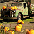 Trucked In Pumpkins by Michael Riley