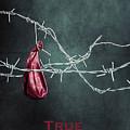True Friends by Joana Kruse