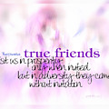 True Friends by Vicki Ferrari