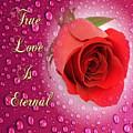 True Love Is Eternal by Clive Littin