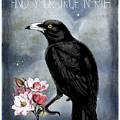 True North Crow And Magnolias by Sandra McGinley
