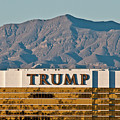Trump Tower Nevada by Andy Smy