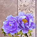 Tryst, Lavender Blue Peonies Still Life Flowers by Tina Lavoie