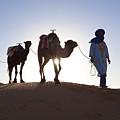Tuareg Man With Camel Train, Sahara Desert, Morocc by Peter Adams