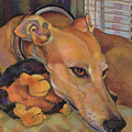 Greyhound by Jane Oriel