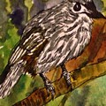 Tufted Titmouse  by Angela Weddle