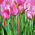 Tulip Bloomies 1 - Pink by Carol Cavalaris