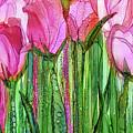 Tulip Bloomies 2 - Pink by Carol Cavalaris