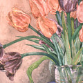 Tulip Bouquet - 9 by Caron Sloan Zuger