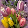 Tulip Bouquet by MTBobbins Photography