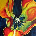 Tulip by Dragica  Micki Fortuna