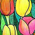 Tulip Expo by Jim Harris