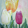 Tulips  by Elvira Ingram