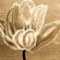 Tulip In Brown Tones by Marsha Heiken