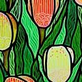 Tulip Joy 2 by Jim Harris