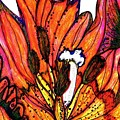 Tulip Macro by Mary Ann Perkins