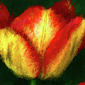 Tulip Painting by Mike Penney
