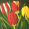Tulip Time by Brandy House