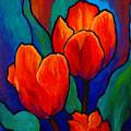Tulip Trio by Marion Rose
