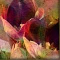 Tulips by Barbara Berney