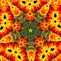 Tulips by Elaine Teague