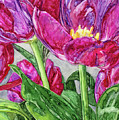 Tulips From A Friend by Vicki Baun Barry