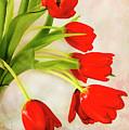 Tulips In A Vase by Gloria Matyszyk