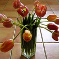 Tulips In A Vase On Tile by Lucyna A M Green