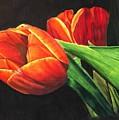 Tulips by Kara Overbee