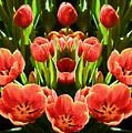 Tulips by Ray Warren