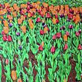 Tulips Tulips Everywhere by Deborah Boyd